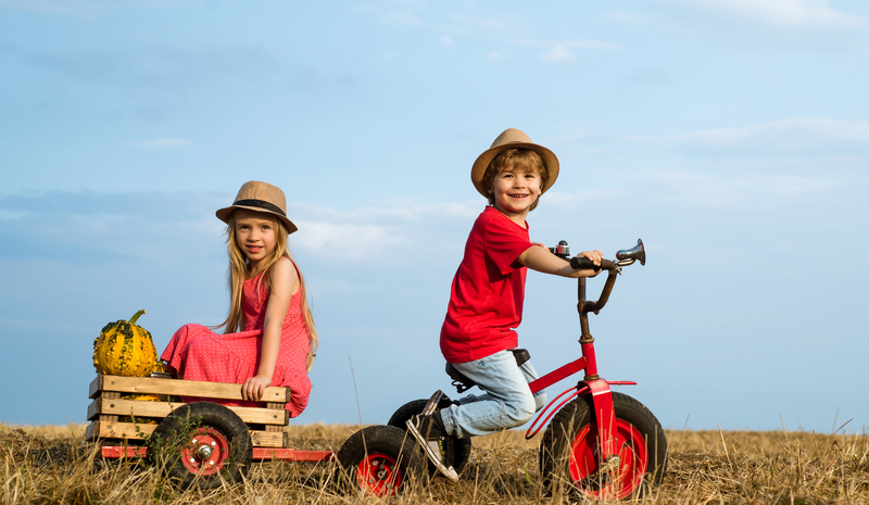 Family Friendly Farm Activities to do this Summer